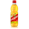 Suco Maguary Concentrate Passion Fruit Pet 500ml