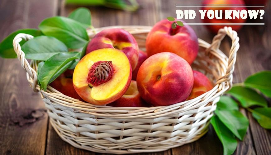 FUNDÃO PEACHES. WHO HAS PROVEN THEM KNOWS THE DIFFERENCE.